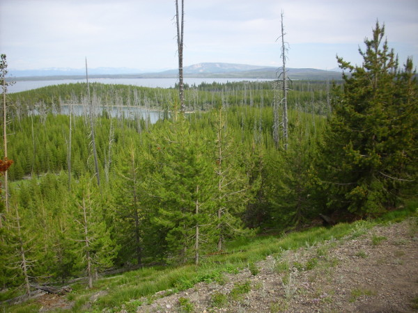 Duck Lake overlook