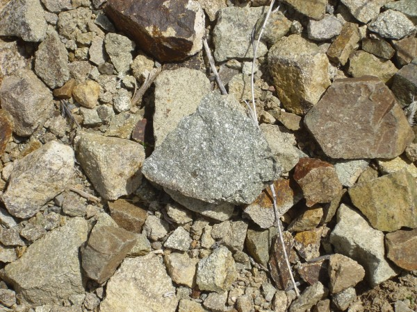 Monzonite sample