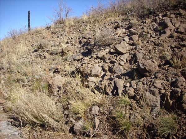 Paliza Canyon andesite