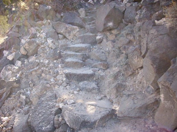Blue Dot Trail steps