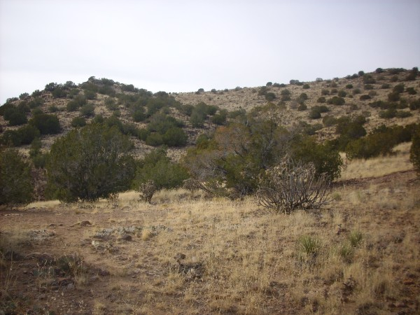 Cerro Seguro