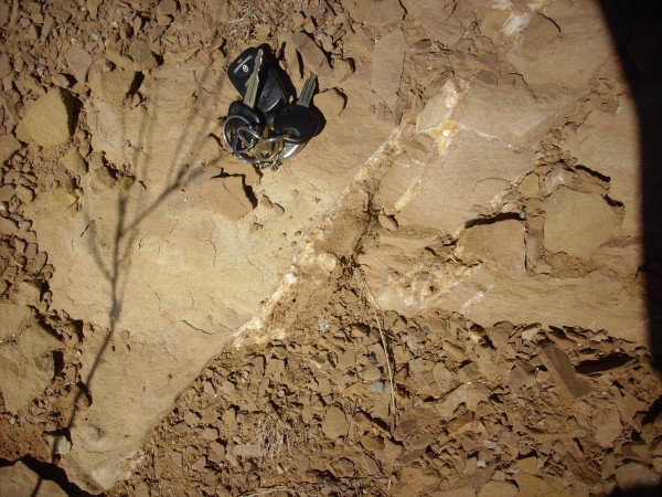 Calcite veins in Mesa Montosa Member