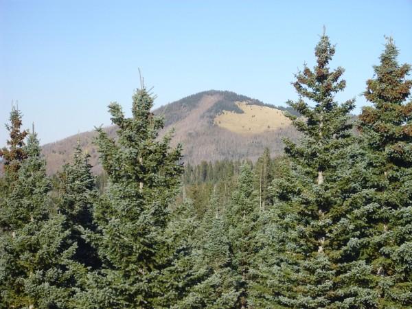 Polvadera Peak