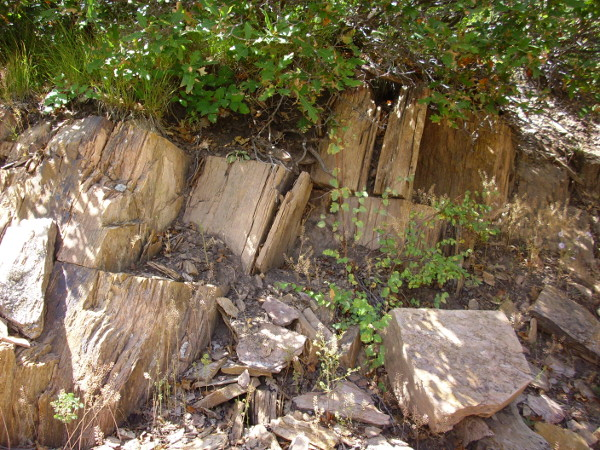 Granite gneiss