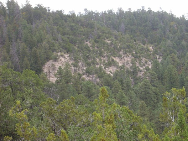 Abiquiu Formation