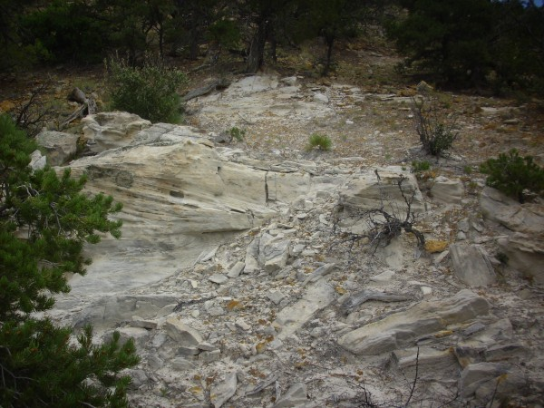 Burro Canyon Formation
