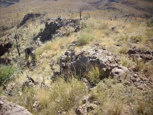 Canovas Canyon Rhyolite