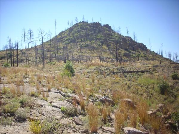 Cerro Balitas