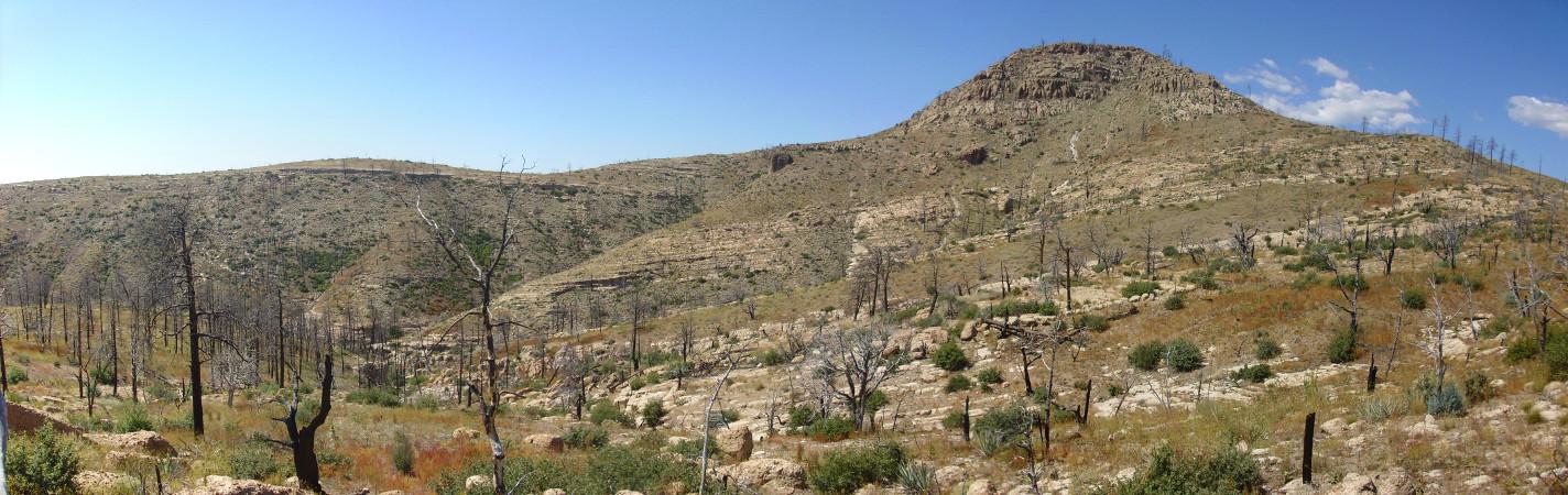 Southeast flank of Cerro Balitas