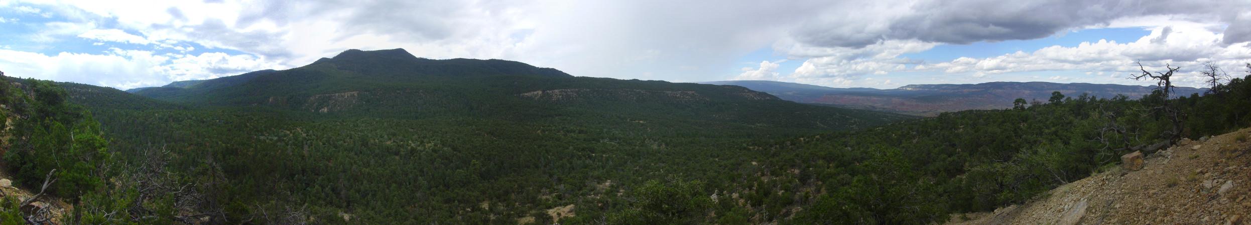 Cretaceous panorama