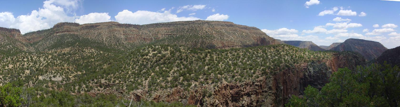 Carboniferous at Guadalupe Box