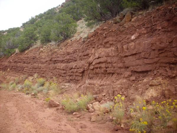 Moenkopi Formation