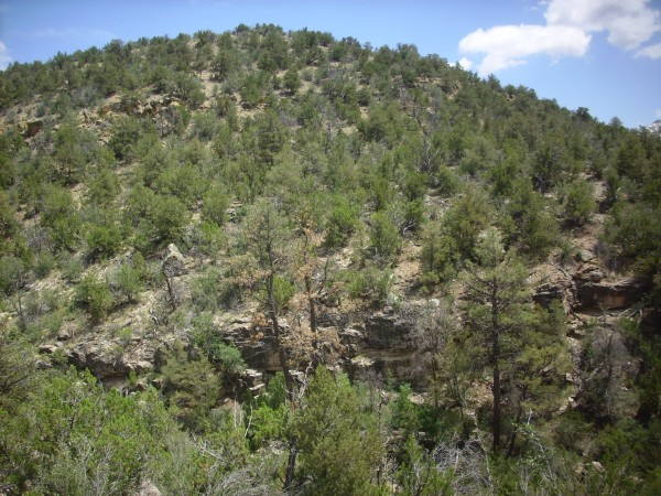 Osha Canyon Formation