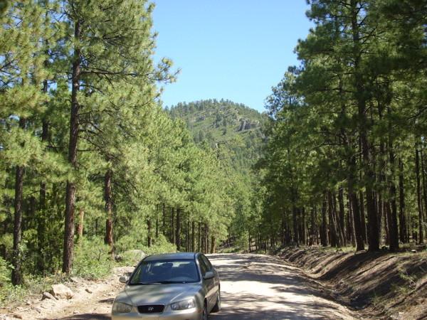 Cerro del Pino